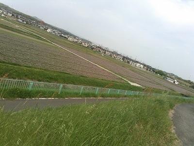京都自転車道10 (31)