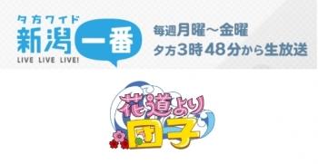 2017新潟一番ロゴ