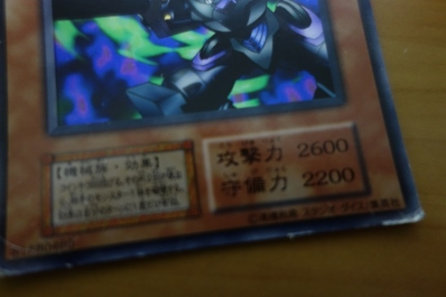 DSC013471 (1)