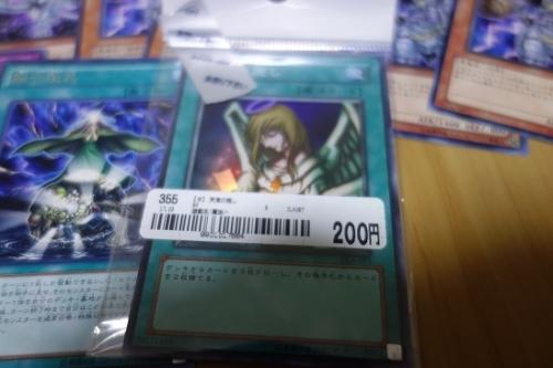 DSC014971 (2)