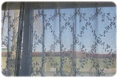 洗濯後のカーテンと窓