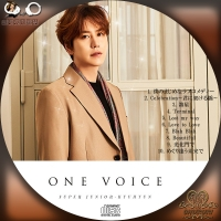 SUPER JUNIOR-KYUHYUN  ONE VOICE☆