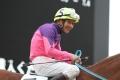 170303 金子騎手ラストラン-05
