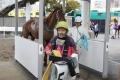 170303 金子騎手ラストラン-16