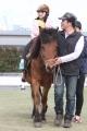170407 木曽馬&ミニチュアホース-01