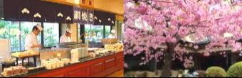 363-340料理と桜