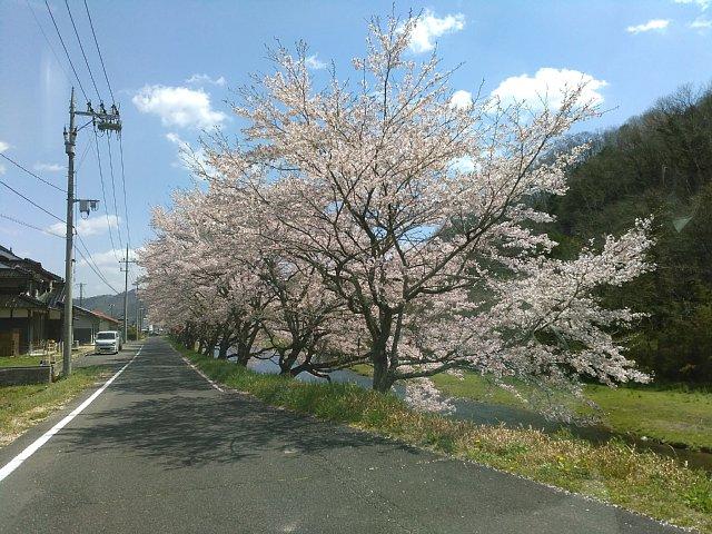 29413hoku.jpg