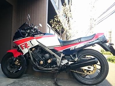 yuhige984 (28)