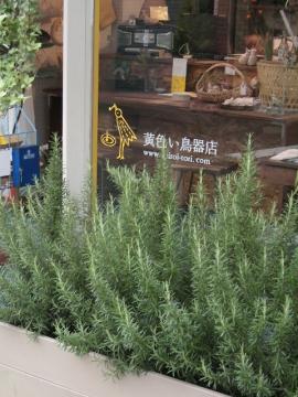 012旧店舗外観のコピー