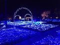 nabana blue illumination
