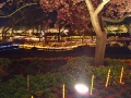 nabana pond illuminaton