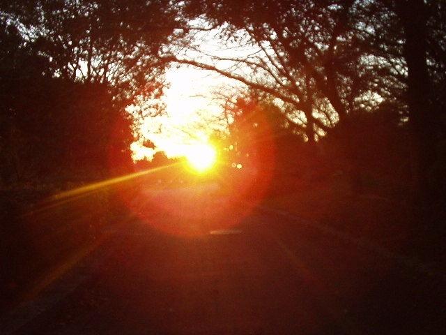 西日の太陽