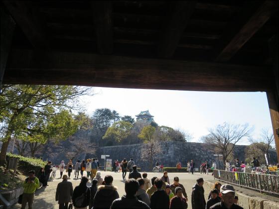 大阪城公園梅林2017-08