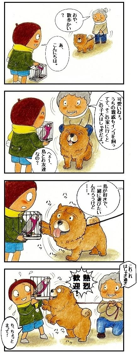 チャウチャウ犬に好かれる