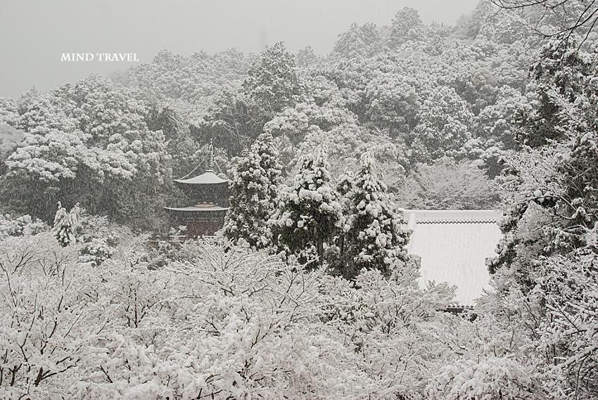永観堂 雪3