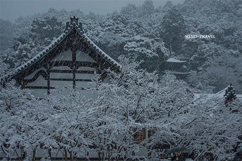 永観堂 雪-日暮れ