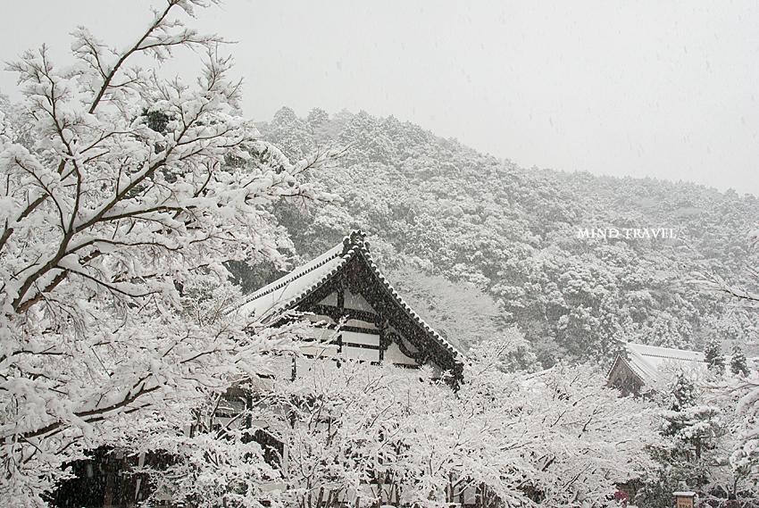 永観堂 雪2