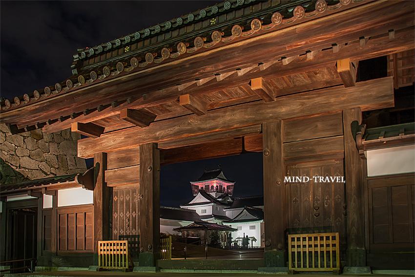 富山城 ライトアップ3