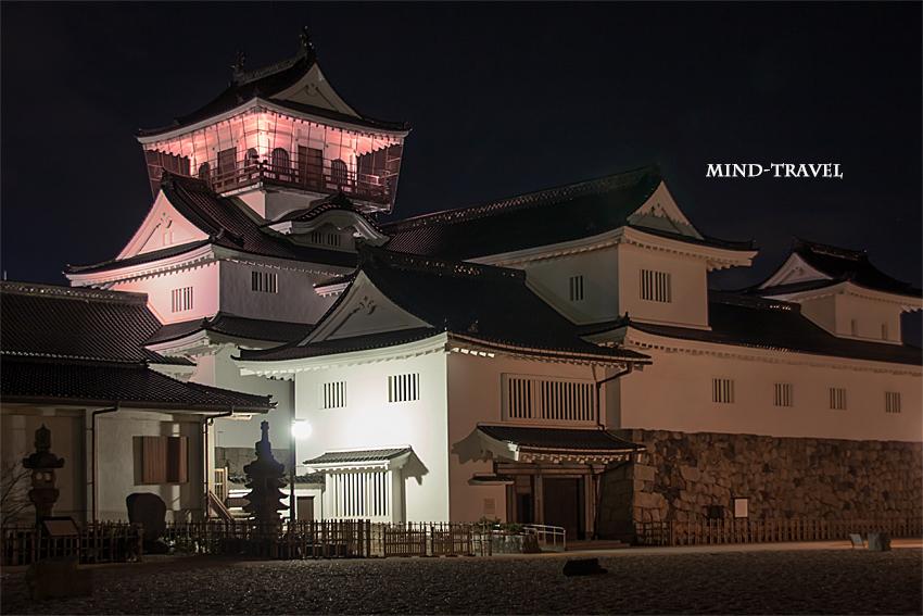 富山城 ライトアップ2