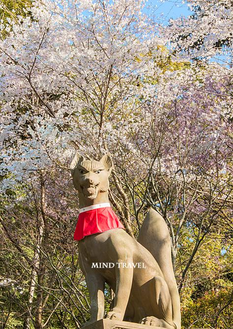 伏見稲荷大社 狐の像