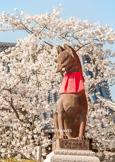 伏見稲荷大社 狐の像2