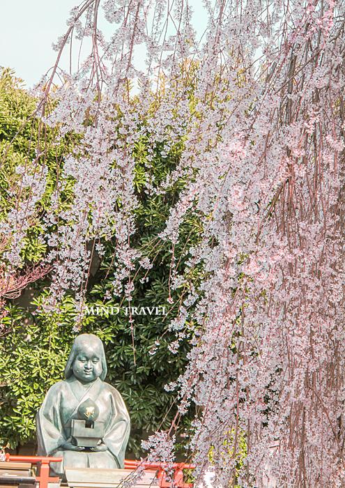 千本釈迦堂 おかめ桜とおかめ像