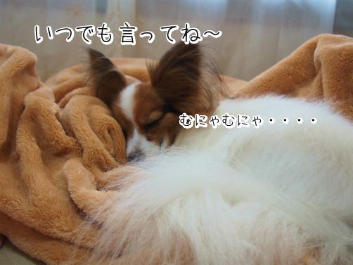 naEfxm_Tすとーかー9