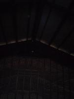 天井裏感知器 差動式スポット型 小林消防設備