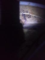 天井裏状況 配線付近 小林消防設備