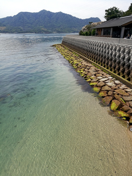 うさぎ島⑤