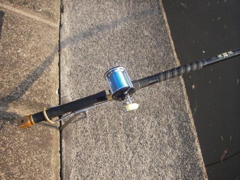 巨鯉竿とペン155