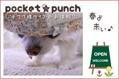 pocket★punchへ
