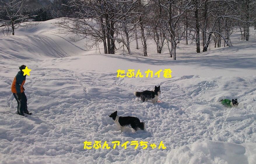 DSC_8394.jpg