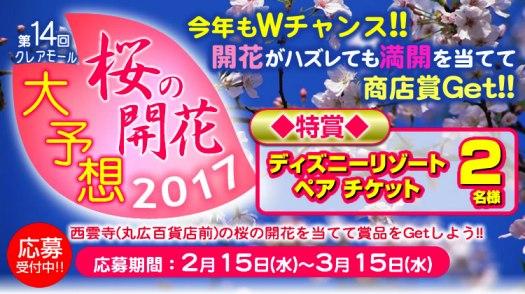 桜の開花大予想2017