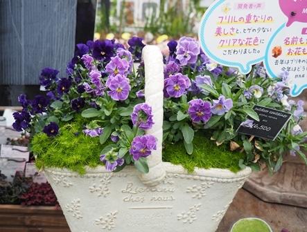 garden3fc.jpg