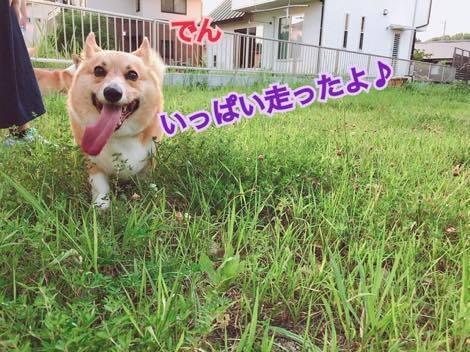 th_IMG_0052.jpg