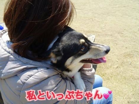 th_IMG_0374.jpg