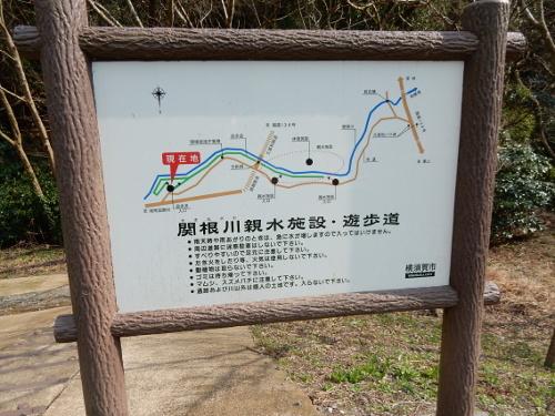 DSCN5942.jpg