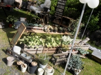 Huntington Garden-1000