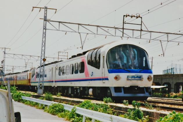 IMGP8455.jpg