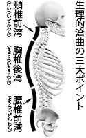 seiriwankyoku1.jpg