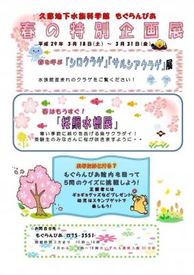 もぐらんぴあ 春の特別企画展