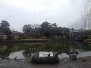 sarusawa0401_convert_20170401110943.jpg