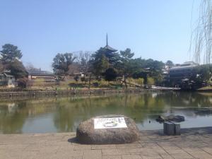 sarusawa0404_convert_20170404113602.jpg