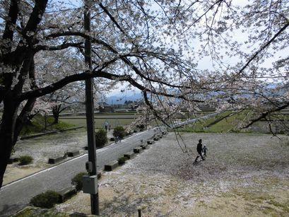 asakura0416-10.jpg