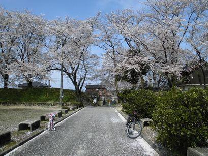 asakura0416-11.jpg