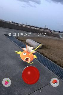 ayuyae0317-4.jpg