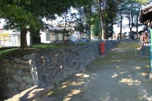 miyausiro (2)