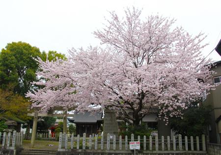 神明神社1