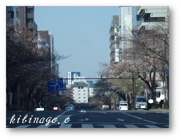 2017年3月30日 一口坂交差点